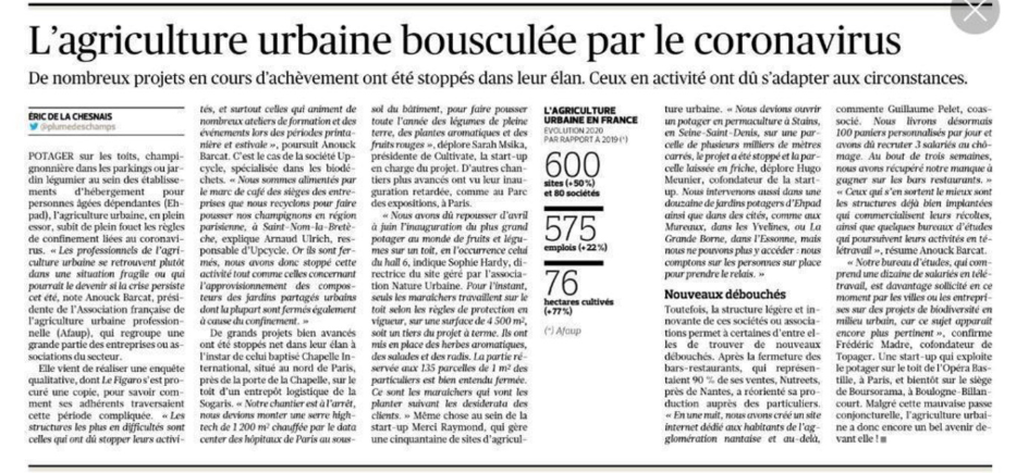Le Figaro   L'agriculture urbaine bousculée par le coronavirus